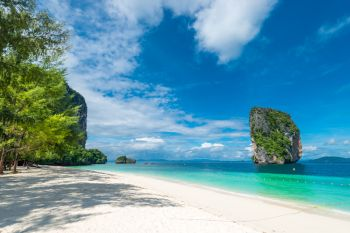 photo view of Krabi in the shade of a tree on the beach, Thailand