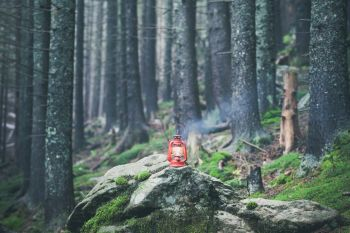 hiking rocky path trail and red vintage lantern in foggy misty moody woodland. hiking rocky path trail in foggy misty moody woodland