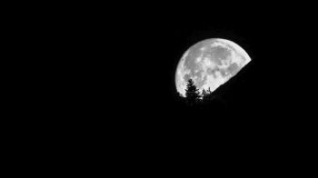 A full moon disappears behind a mountain and tree silhouette in a black night sky