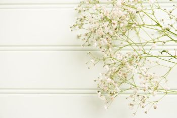 A bouquet of gypsophila flowers lay on the wooden table. Vintage style image. Copy space