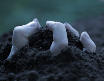 Hand emerging from the ground trough the soil