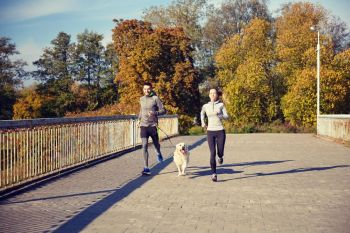 fitness, sport, people and jogging concept - happy couple with dog running outdoors. happy couple with dog running outdoors