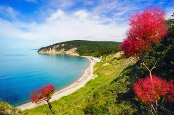 Beautiful view over the sea from a height, with flowers. Russia , Bukhta Inal.. Beautiful view over the sea from a height, with flowers.