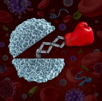 Immune system concept as an open white blood cell with a boxing glove emerging as a health care metaphor for fighting disease and infection through the natural defense of the human body.