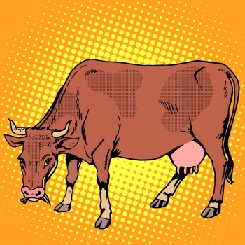 Cow eating grass farm animals pop art retro style. Ranch and agriculture. Meat and dairy industry and business. . Cow eating grass farm animals