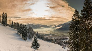 winter mountain landscape with forest and evening light sky