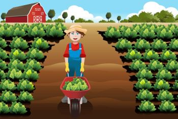 A vector illustration of little boy working in a vegetable farm