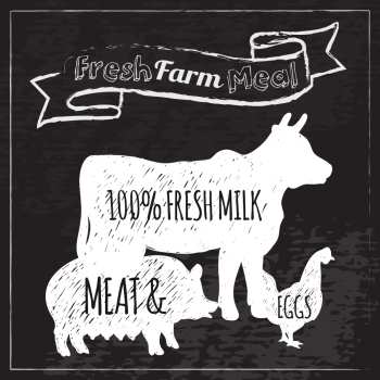 Farm animals and fresh milk meat and eggs food poster chalkboard vector illustration