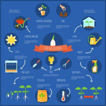Seedling Infographic Set. Seedling infographic set with watering and temperature symbols flat vector illustration