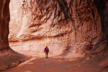 Slot canyon in Grand Staircase Escalante National park, Utah, USA. Unusual colorful sandstone formations in deserts of Utah are popular destination for hikers. Living coral toned.